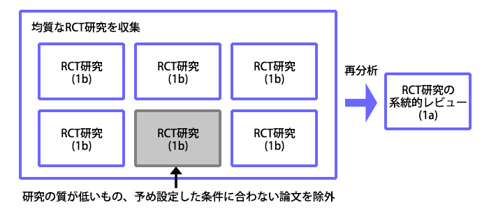ランダム化比較試験の系統的レビュー